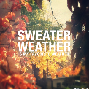 G8 sweater weather