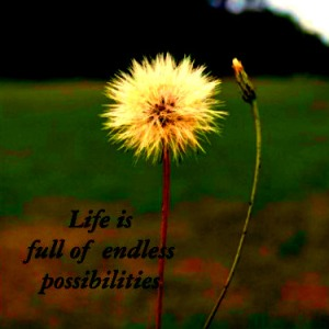 life-is-full-of-endless-possibilities1